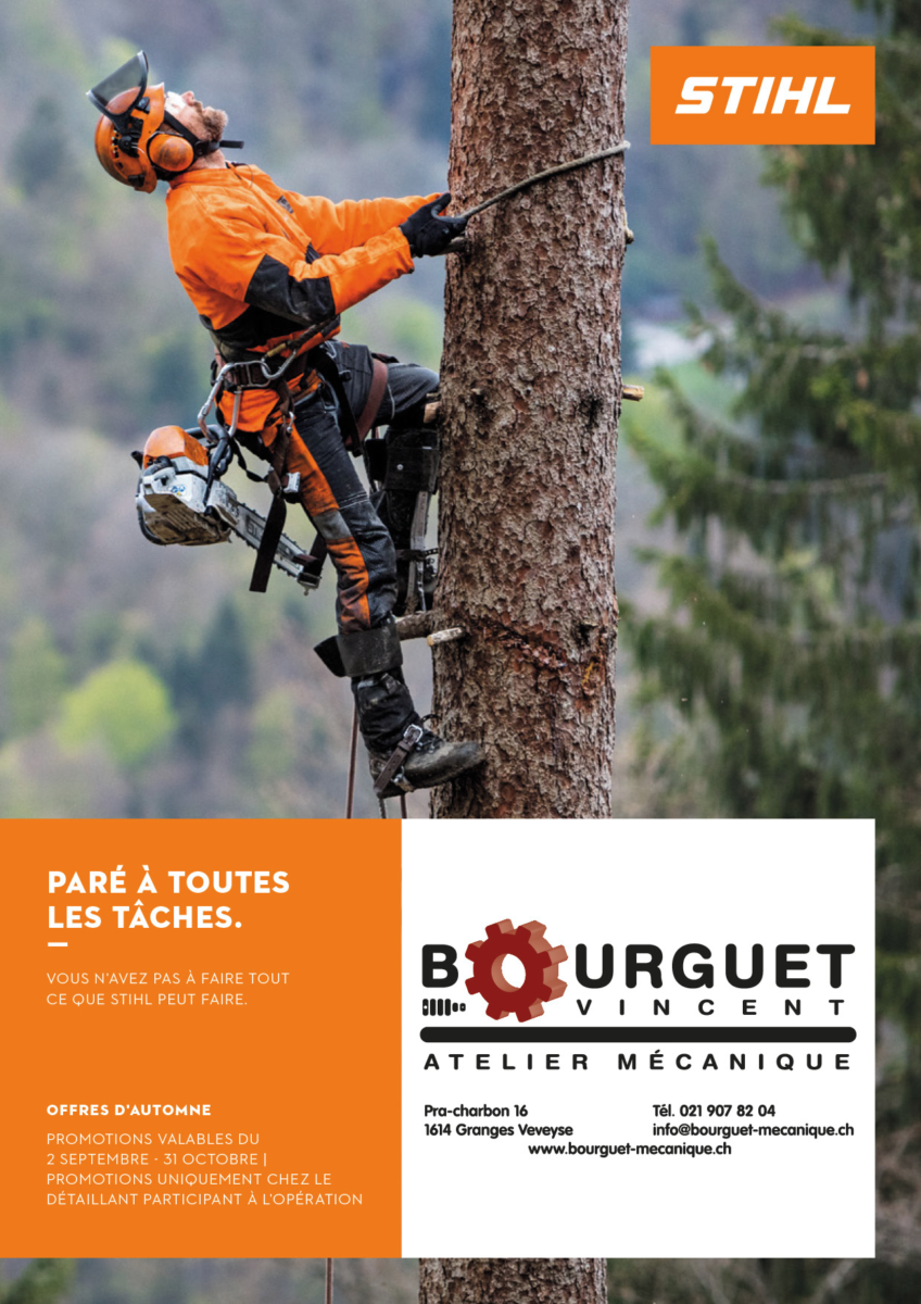 Stihl – Promotions d'automne 2019